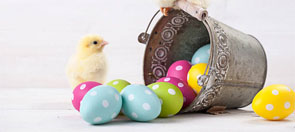 Easter Eggs and Chick